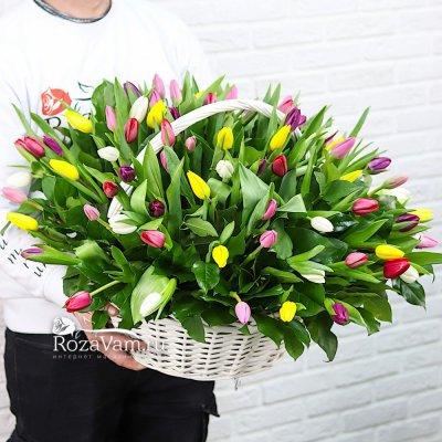 Корзина из 101 тюльпана микс