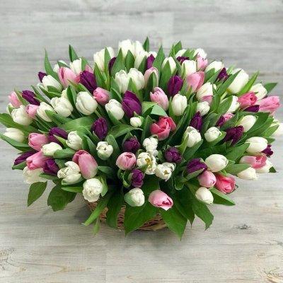 Корзина из 151 тюльпана