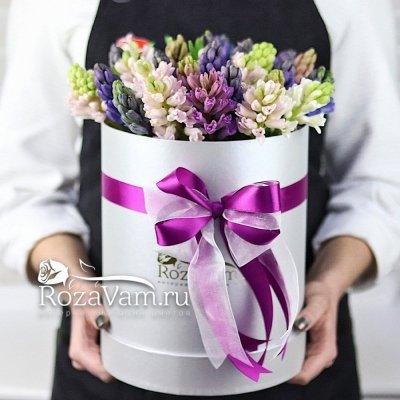 Коробка гиацинтов