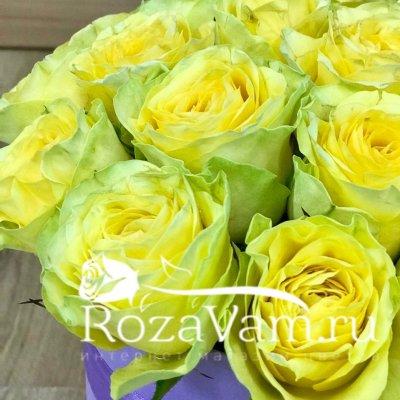 Коробка из 19 жёлтых роз