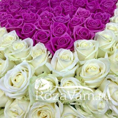 Корзина из 201 розы в виде сердца