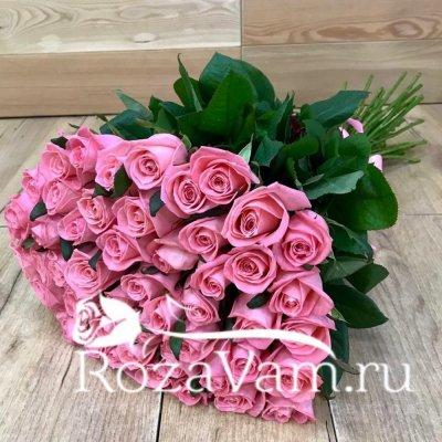 Букет из 51 коралловой розы (70 см)