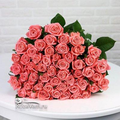 Букет из 51 коралловой розы (80 см)