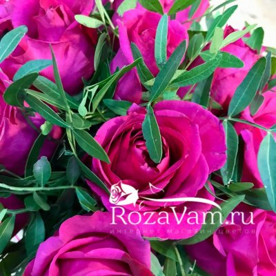 Коробка из 19 малиновых роз