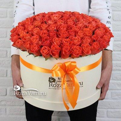 Коробка из 101 оранжевой розы