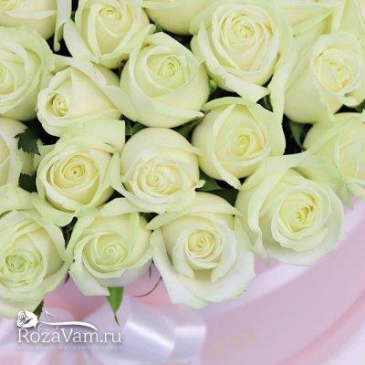 Коробка из 101 белой розы