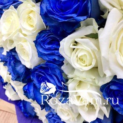 Букет из 101 бело-синей розы (70 см)