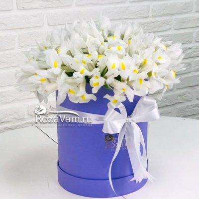 Коробка с белыми ирисами