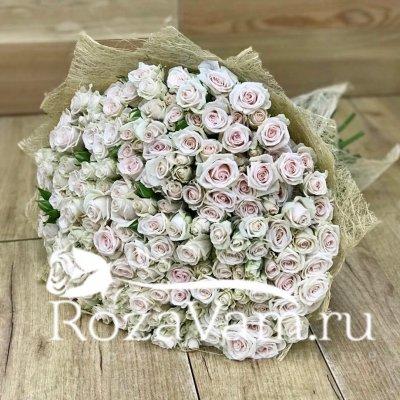 Букет кремовых кустовых роз 51 шт