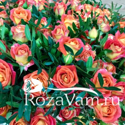 Коробка из 101 кустовой  оранжевой розы