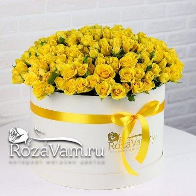 Коробка из 101 кустовой  желтой розы