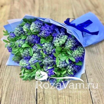Букет из синих гиацинтов 25 шт