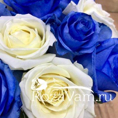 Бело синие розы в коробке 19 шт