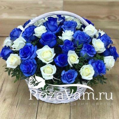 Корзина из 51 сине белой розы
