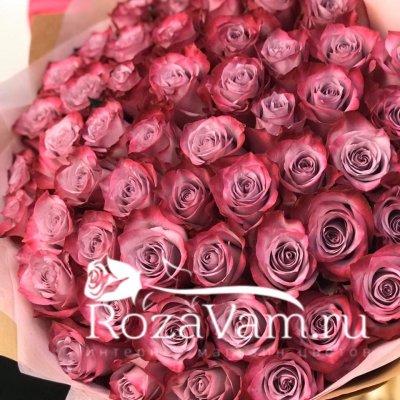 Букет из 51 розы эквадор 60 см