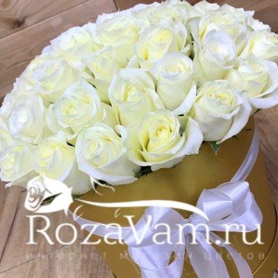 Коробка из 51 розы эквадор белой