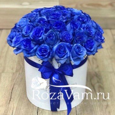 Коробка из 51 синей розы