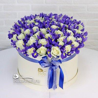 Коробка ирисов с розами XXL