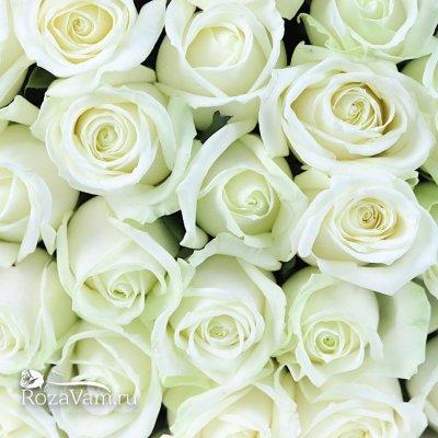 Букет из 29 белых  роз  (70 см)