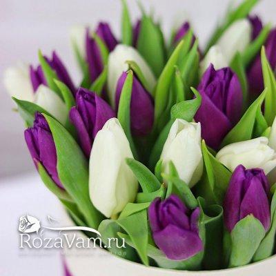 коробочка из 29 тюльпанов