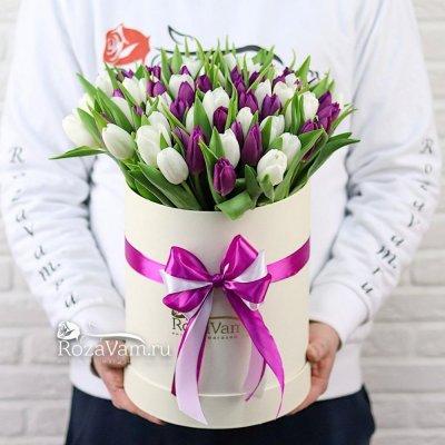Коробка из 75 тюльпана микс