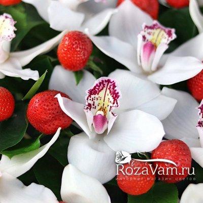 Корзина орхидеи с клубникой