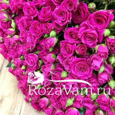Букет из 101 розы кустовой