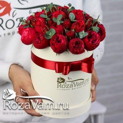 Красные пионовидные розы в коробке (s)