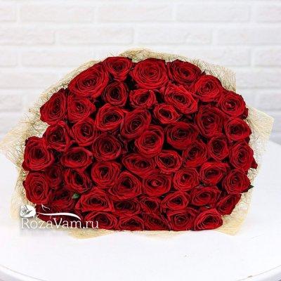 Букет из 51 красной розы ( 70 см)