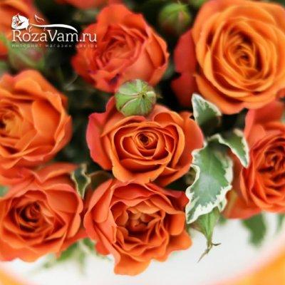 Коробка оранжевых кустовых роз