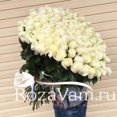Букет из 101 метровой белой розы