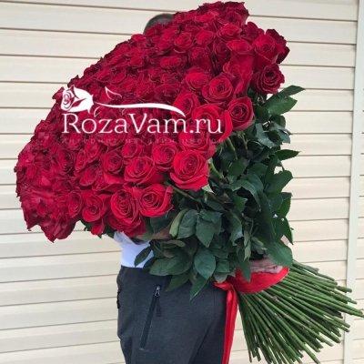 Букет из 201 метровой розы