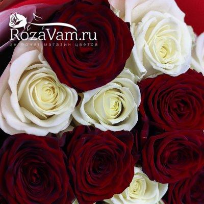 Букет из 19 красно-белой розы (50 см)