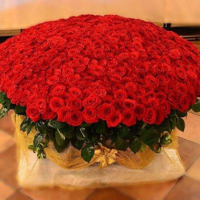 корзина ИЗ 1001 красной розы