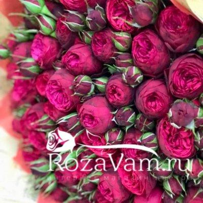букет из 51 пионовидной красной розы