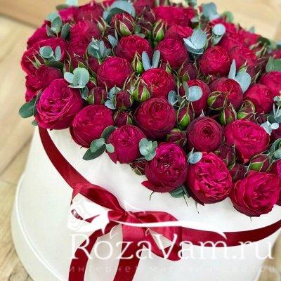 коробка из красных пионовидных роз xxl