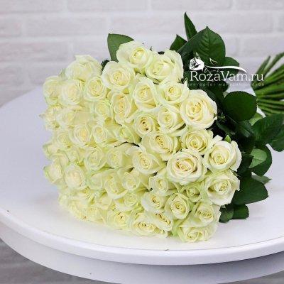 Букет из 51 белой розы ( 70 см )