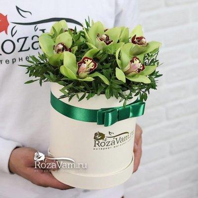 Шляпная коробка из 7 орхидей с зеленью