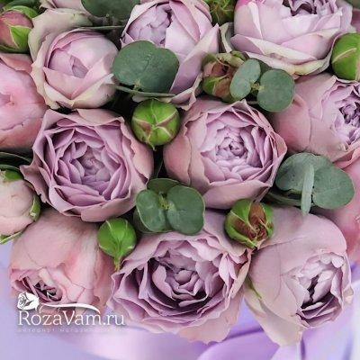 Коробка сиреневых пионовидных роз