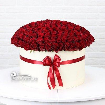 Коробка из 201 красной розы