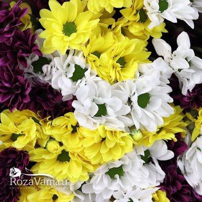 Букет из 15 веточек кустовых хризантем