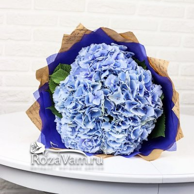 Букет из 5  синих гортензий