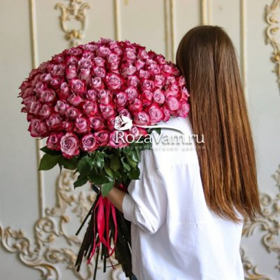 Букет из 101 розы Эквадор 70см