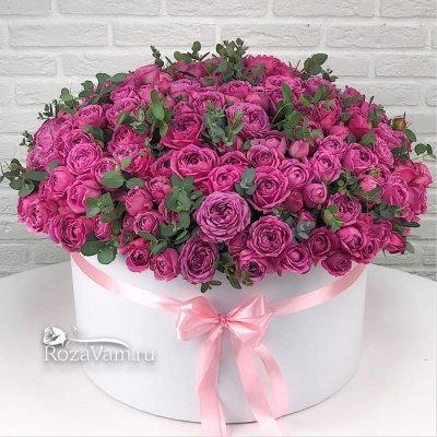Коробка из 85 пионовидных роз
