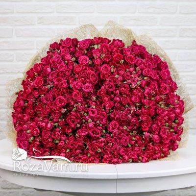 Букет из 101 кустовой розы Алисия 70 см