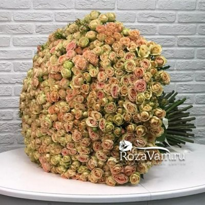 Букет из 101 кустовой розы Азора 70см