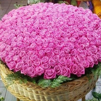 корзина ИЗ 1001 розовой РОЗЫ