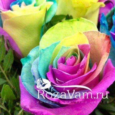 Радужные розы в коробке 15 шт