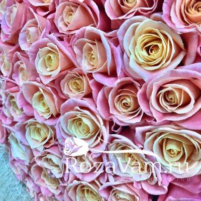 Букет из 101 персиковой розы (50 см)