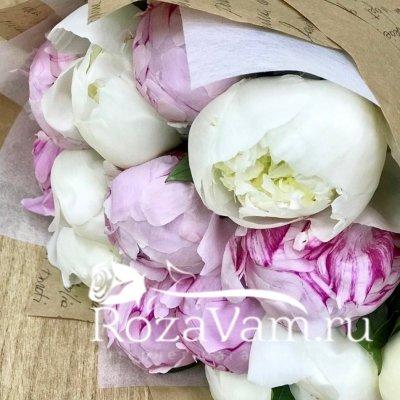 Букет из 11 бело-розовых пионов